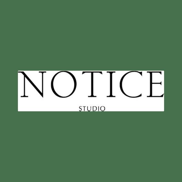 Logo création de site Notice Studio